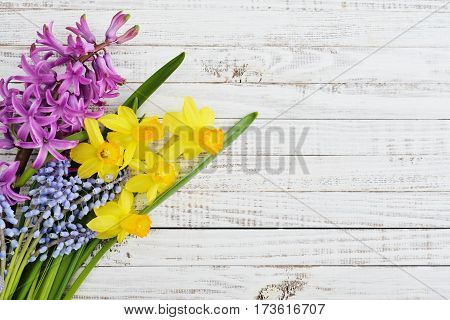 Spring Flowers - Hyacinth And Narcissus