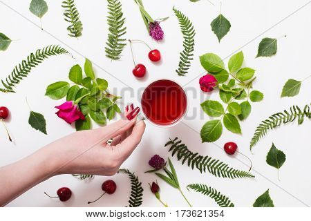 Hand with cup of red tea green blades of grass with purple flowers leaves birch twigs rose with red flowers green ferns ripe cherries isolated on a white background. Flat lay tea. Herbal decoction