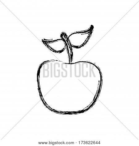contour apple fruit icon stock, vector illustration desing