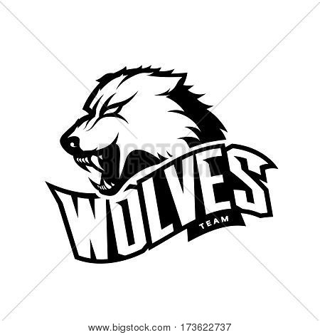 Furious wolf sport mono vector logo concept isolated on white background. Web infographic predator team pictogram. Premium quality wild animal t-shirt tee print illustration.
