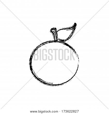 contour orange fruit icon stock, vector illustration design