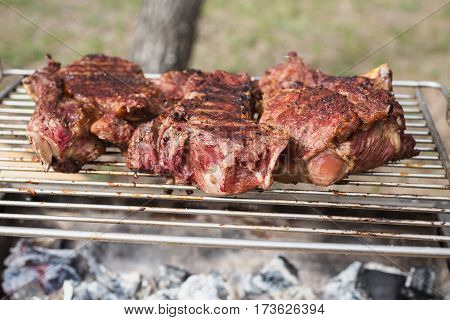 Bake the meat on the grill. Cooking outdoors. Tasty meat healthy food. Cook meat on nature