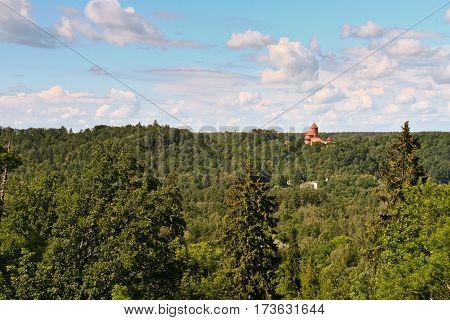 beautiful view from above on the crowns of trees stretching to horizon, sunny day, summer, green leaves, nature, with the right red brick castle, towering above all  trees, blue sky and white  clouds