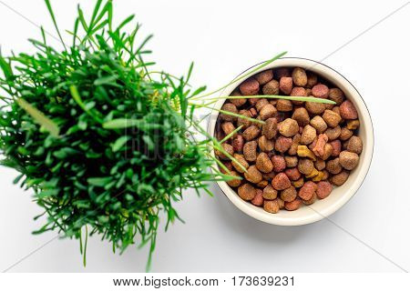 dry dog food in bowl on white background top view.