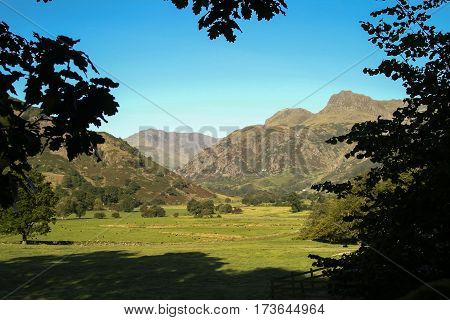 The Langdale Pikes mountains in Cumbria framed by leaves from trees