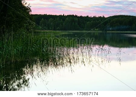 beautiful landscape with a lake on the other side there, cloudy, evening,  in water scraps of vegetation, summer, processed, skyline, the sunset with a pink shade sky