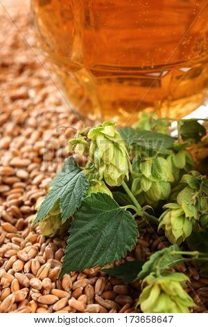 Hop and glass of fresh beer on wheat grains background