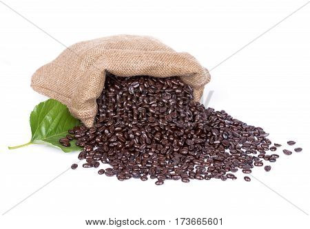 Coffee Beans In Burlap Sack With Leaf  Isolated On White