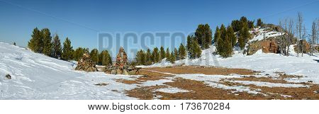 Pass in the mountains during the winter season. Pine trees, snow, rocks and dry yellow grass.