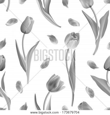 Seamless from gray tulips. Clipping Mask. Vector illustration. Not trace. Black and white background.