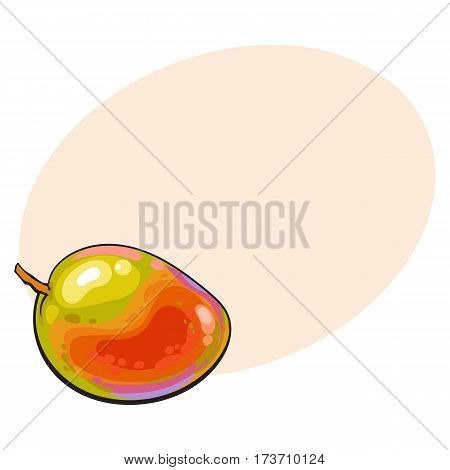 Whole unpeeled, uncut sweet mango tropical fruit in horizontal position, sketch style vector illustration with place for text. Realistic hand drawing of whole mango fruit