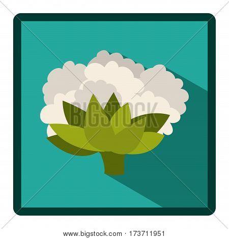 symbol cauliflower icon image, vector illustraction design stock
