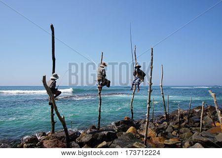 Stilt Fishermen in Sunny Day at Kogalla in Sri Lanka