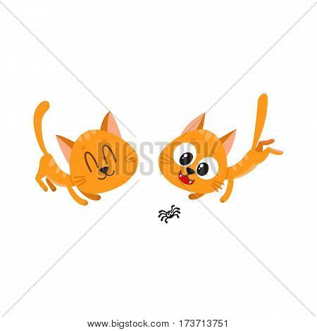 Two cute and funny red cat characters playing together, cartoon vector illustration isolated on white background. Couple of cute and funny red cat characters playing with little spider