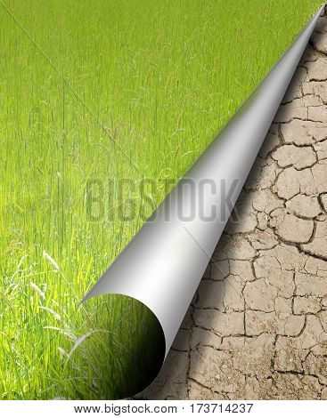Photo montage of curled page with ground and grass