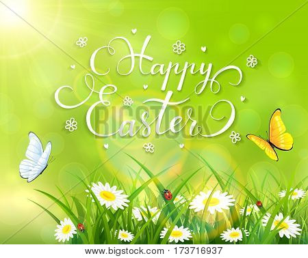 Easter theme with a butterfly flying above the grass and flowers, green nature background with sun beams and lettering Happy Easter, illustration.