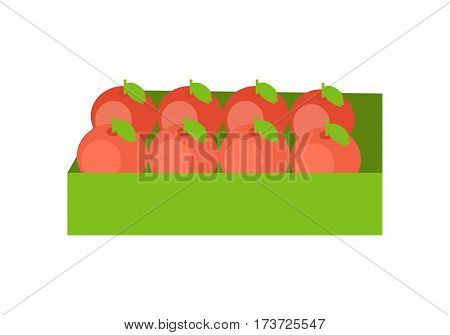 Red apples in a green box. Box full of fresh apples in flat. Box of lovely red apples. Apples in a row. Retail store element. Isolated vector illustration on white background.