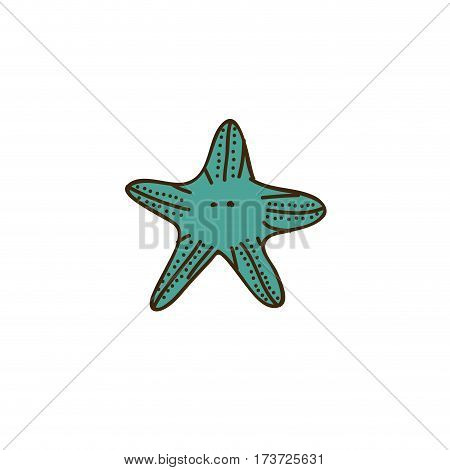 colorful starfish icon stock, vector illustration design image