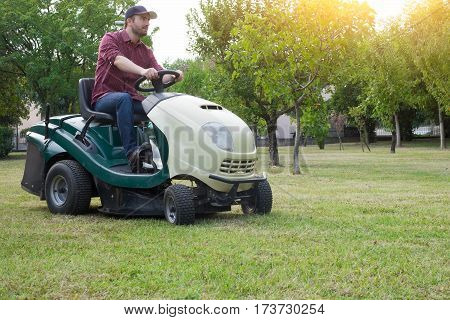 Gardener cutting the grass of a garden seated on a lawn mower