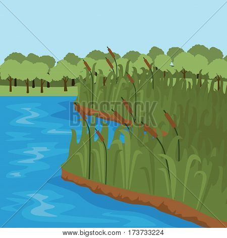 Bank of the river with grass and trees on the other shore.