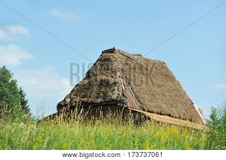 Ancient Carpatian Hut In Forest