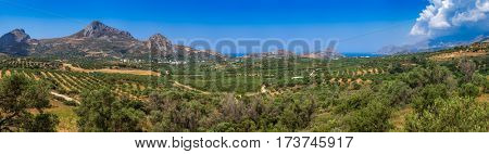 Panoramic view of summer Crete Greek Island near Preveli Lagoon with olive tree plantations mountains and Libyan Sea in background