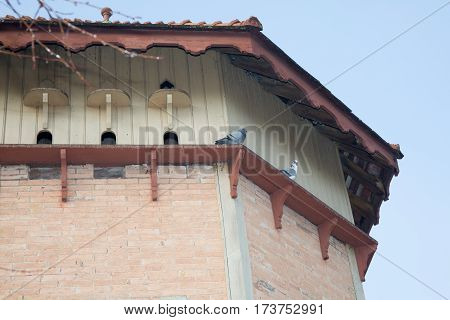 An old pigeon house with birds in sky
