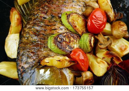 Baked fish with vegetables mushrooms and lemon. Focus on a center image.