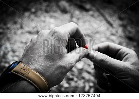 Colorsplashed photo of hands with a wristwatch holding a red berry