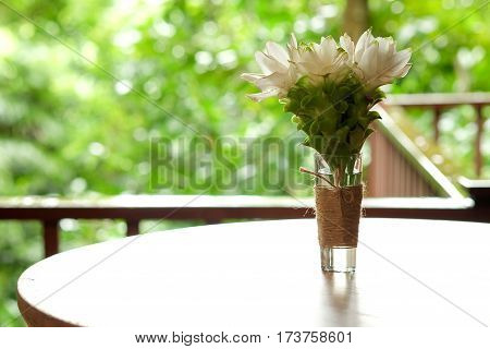 Siam Tulip white flowers in a glass with water. Tied with rope put decorations on the table on the terrace.