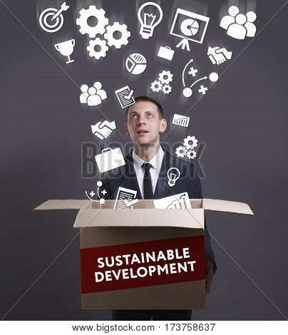 Business, Technology, Internet And Network Concept. Young Businessman Shows The Word: Sustainable De