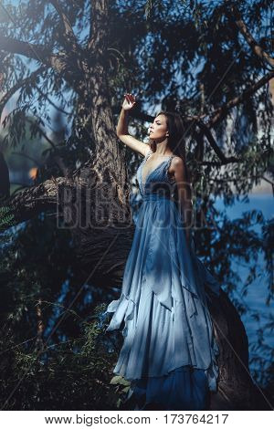 Fashion model standing on tree in fantastical place. Creative photo of gorgeous woman in luxury long blue dress posing in luxury dress outdoors. Multi-racial Asian Caucasian girl. Fashionable toning.