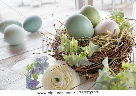 Still life with pastel colored easter eggs in a nest of straw and flowers on a white wooden table