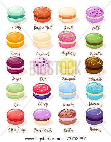 Macaroons with different flavors and fillings. Different taste and colour cartoon style vector illustration.