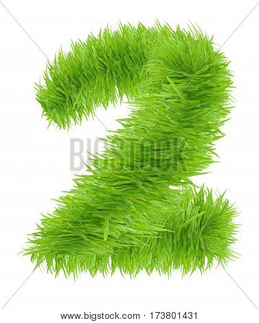 Number made of grass - 2 Two isolated on white