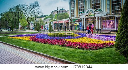 A beautiful alley with flower beds in the resort town Kislovodsk, Russia, Caucasian Spas - April 12, 2016. Rain day.