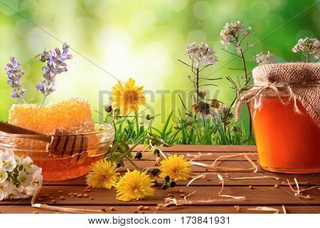 Honey Pot And Honeycomb With Green Nature Background With Flowers