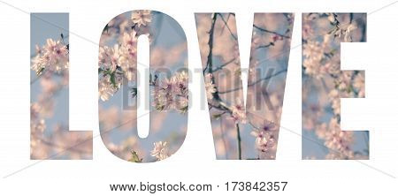 The Word Love Filled With Romantic Pink Blossom