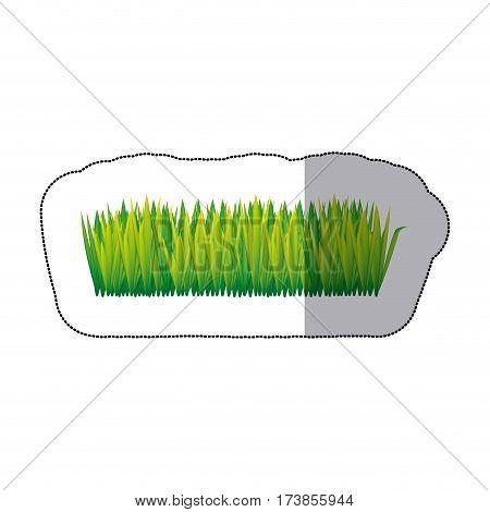 color tall grass icon, vector illustraction design image