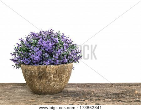 Closeup artificial plant in pot for decorate on blurred old brown wooden desk isolated on white background with copy space