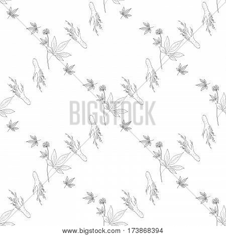 Root and leaves panax ginseng sketch style. Hand draw vintage illustration of medicinal plants. For traditional medicine gardening. Biological additives are. Seamless pattern.