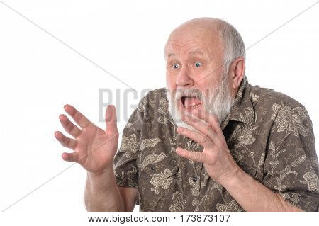 Shocked bald and bearded senior man with grimace of fear, isolated on white background