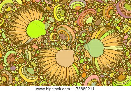 Abstract seashells and pebbles Vector art  backdrop
