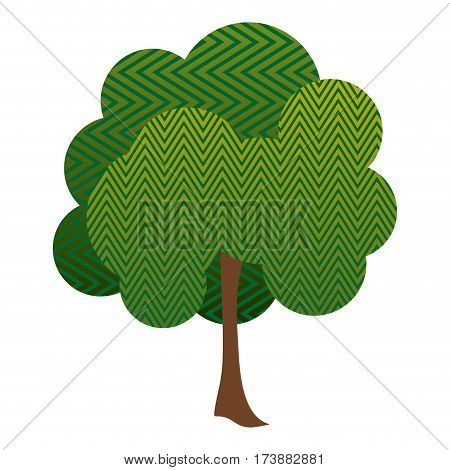 colorful silhouette leafy tree with zig zag lines vector illustration