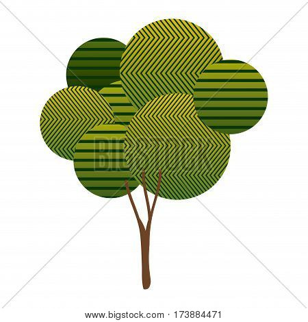 colorful high leafy tree plant with abstract lines and ramifications vector illustration