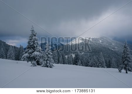 Dramatic Landscape - Winter Evening In The Mountains On The Eve Of Snowfall