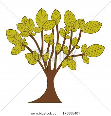 green leafy tree with trunk nature icon vector illustration