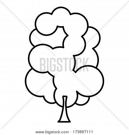 sketch silhouette tree with several crown leaves icon vector illustration