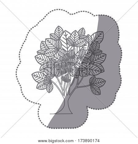 sticker gray color leafy tree plant with ramifications vector illustration