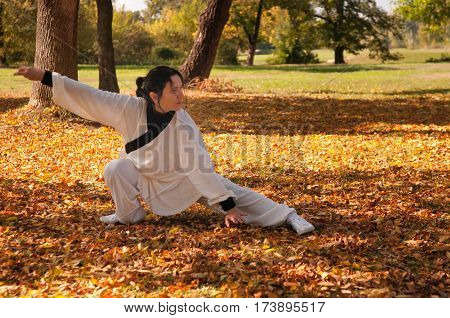 Woman Practicing Ki Gong On Field